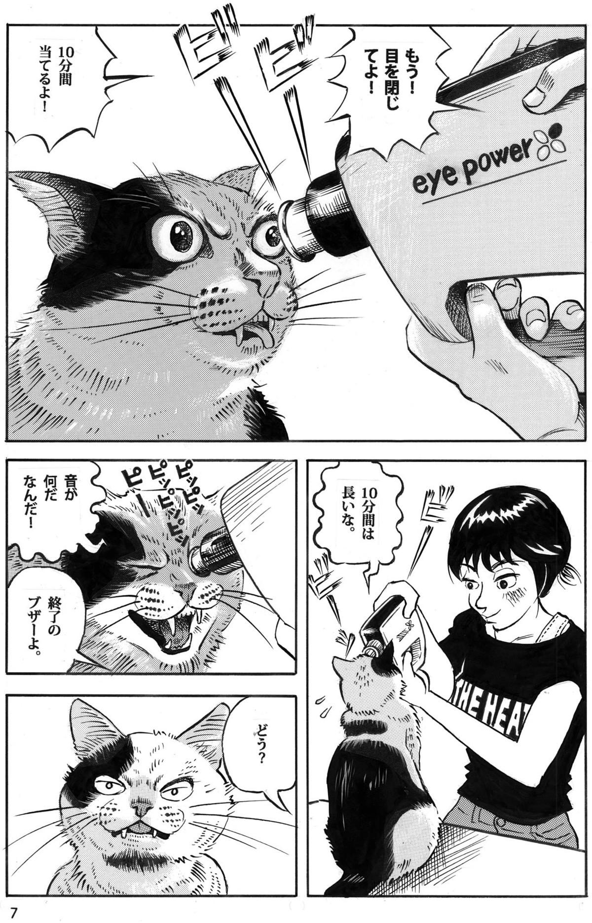 猫だって視力回復したい7